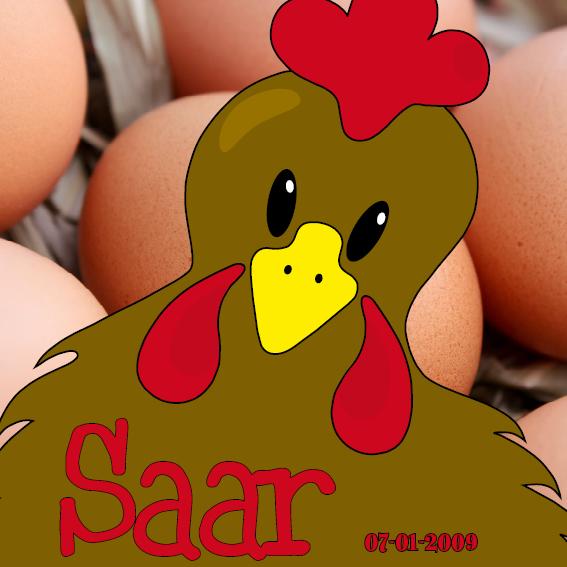 naamschilderij Bruine Kip Emma foto eieren rood