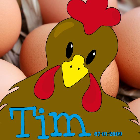 naamschilderij Bruine Kip Emma foto eieren blauw