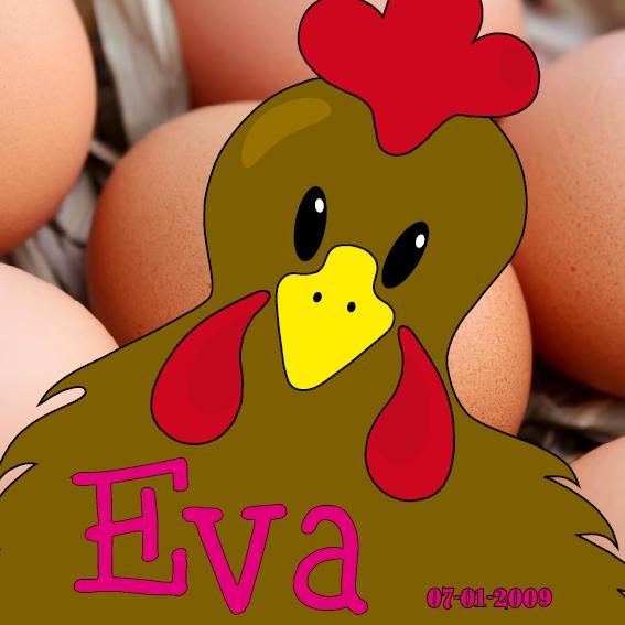 naamschilderij Bruine Kip Emma foto eieren roze