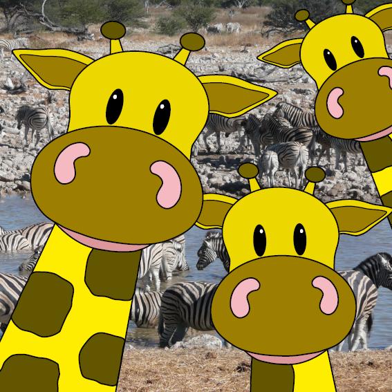 Giraffen foto zebras