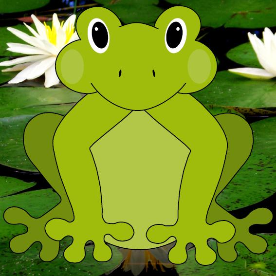 Kikker Joep foto waterlelies
