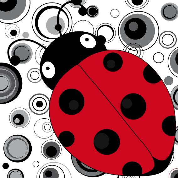 Lieveheersbeestje Sophie zwart-wit cirkels