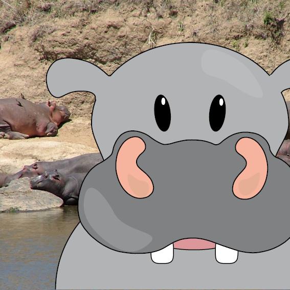 Nijlpaard Benno