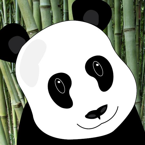 Panda Sam foto bamboe