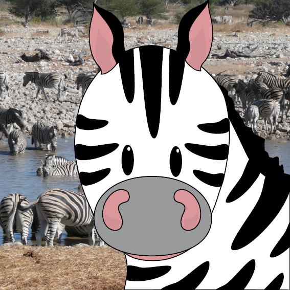 Zebra Mara foto zebras