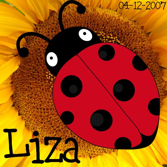 naamschilderij Lieveheersbeestje Sophie foto bloem zwart