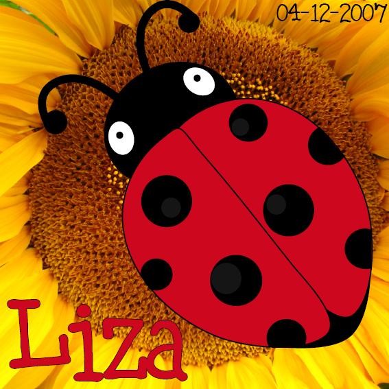 naamschilderij Lieveheersbeestje Sophie foto bloem rood