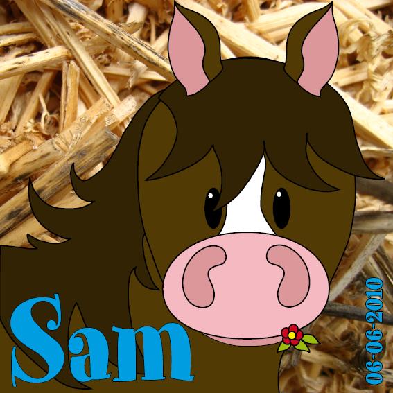 naamschilderij Paardje Amber foto stro blauw
