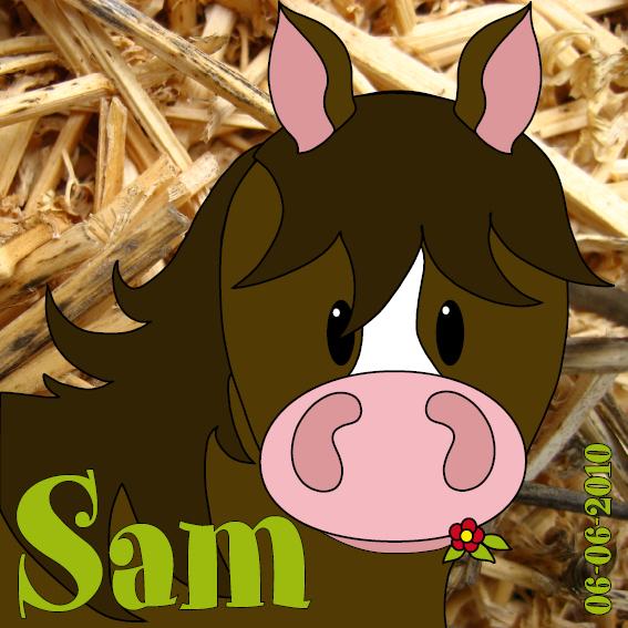 naamschilderij Paardje Amber foto stro groen