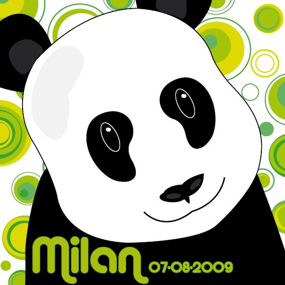 Panda Sam naamschilderij