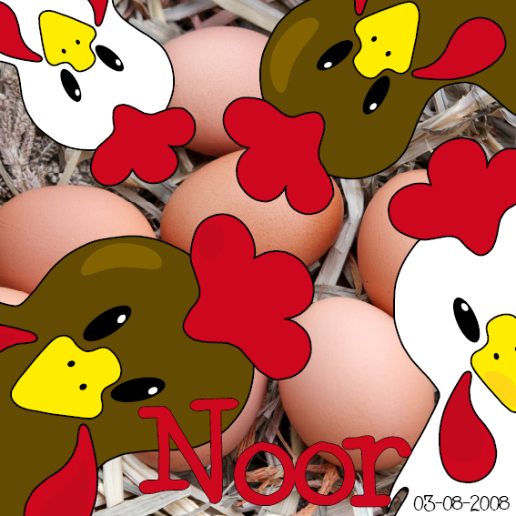 naamschilderij Witte en bruine kippen foto stro rood