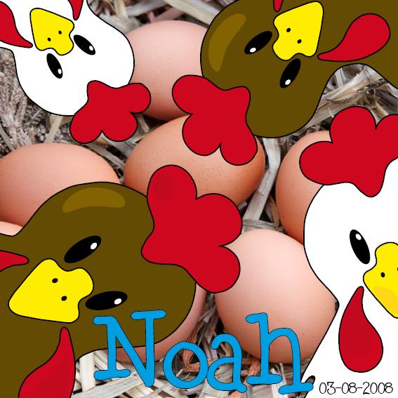 naamschilderij Witte en bruine kippen foto stro blauw